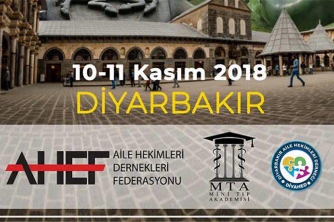 10-11 KASIM 2018 DE AHEF AKADEMİ DİYARBAKIR'DA